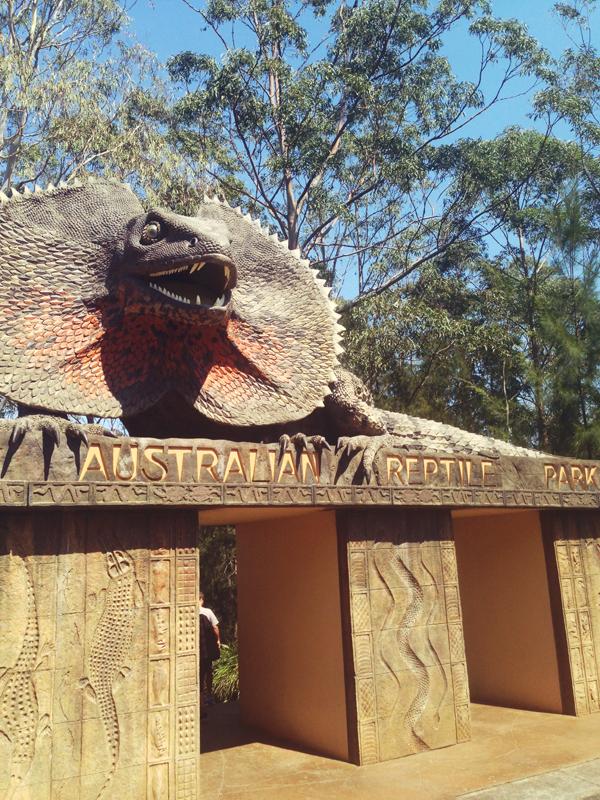 reptile01