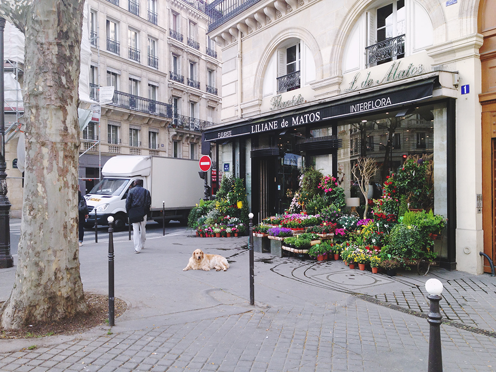 paris31c