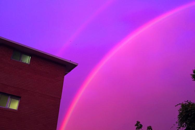 pinkrainbow